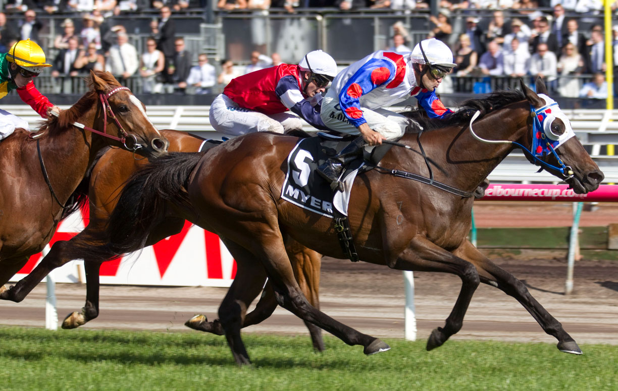Politeness - Group 1 Myer Classic